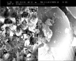 microscopia_SEM